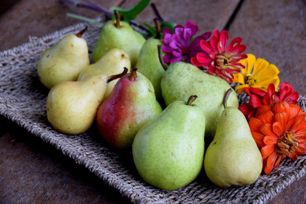 Pears 001.JPG