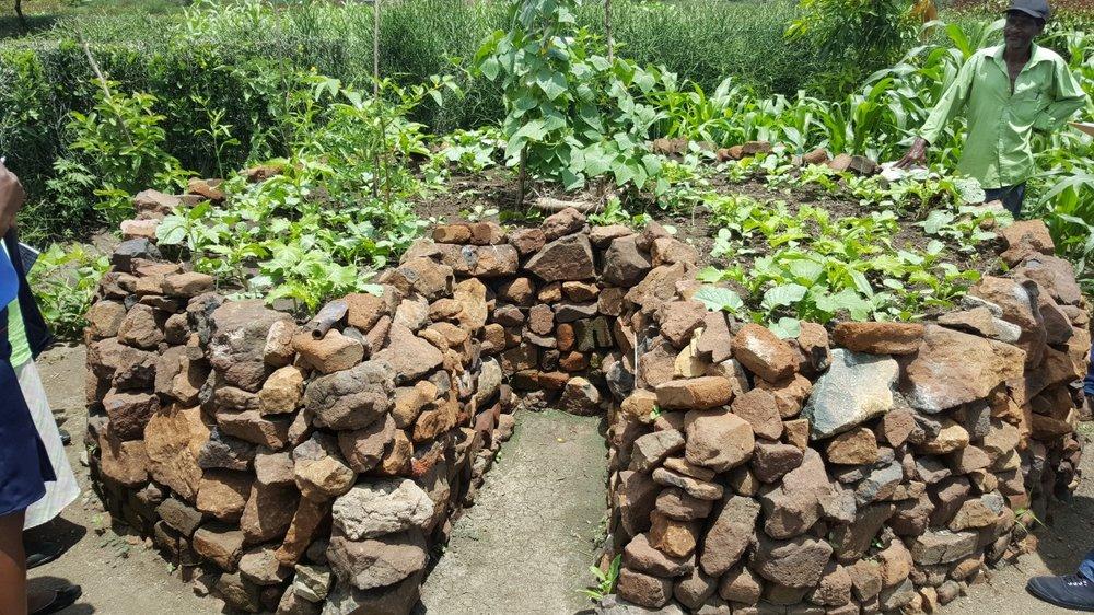 Keyhole garden: Zimbabwe