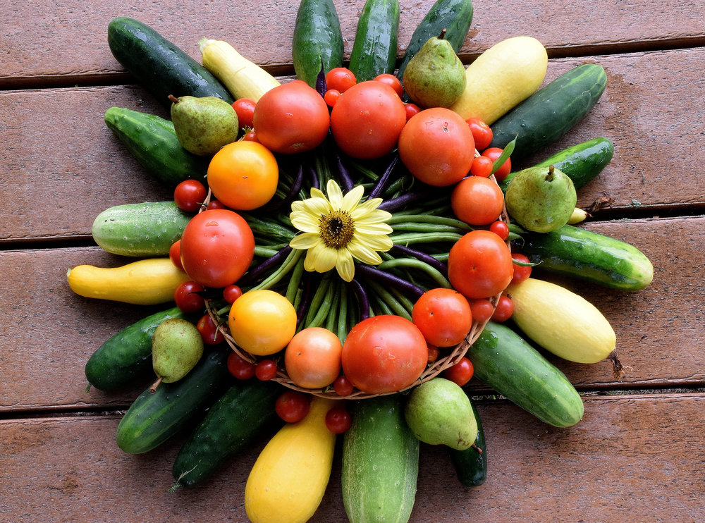 August Kaleidoscope includes yellow squash, cucumbers, tomatoes. bush and pole beans, cherry tomatoes, pears and a sunflower. Just a few of the fruits and vegetables that were donated to Neighbor to Neighbor food bank this week.