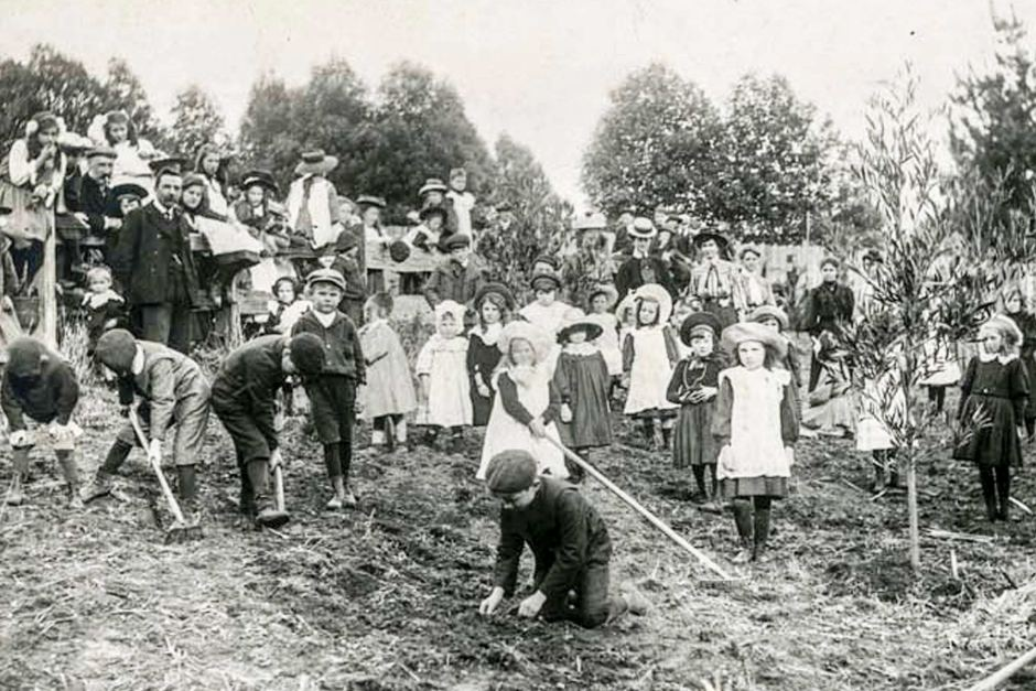 Nebraska Arbor Day, circa 1908