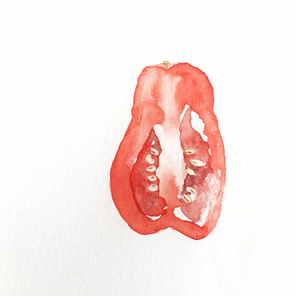 Tomato Watercolor.jpg