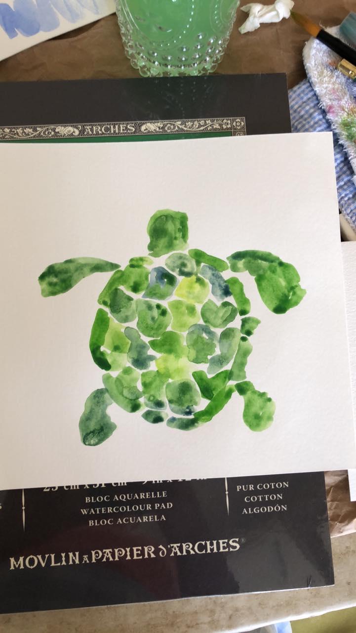Lizzie Turtle.jpg