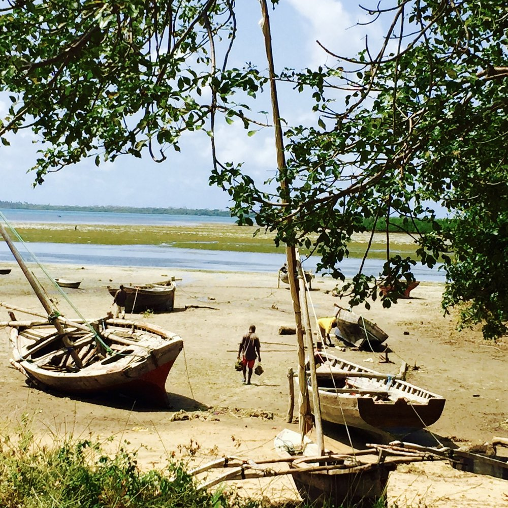 - Politics, Power, and Institutions: facilitating knowledge exchange for the conservation of marine resources in the coastal zone of TanzaniaDuke University Office of Global Affairs