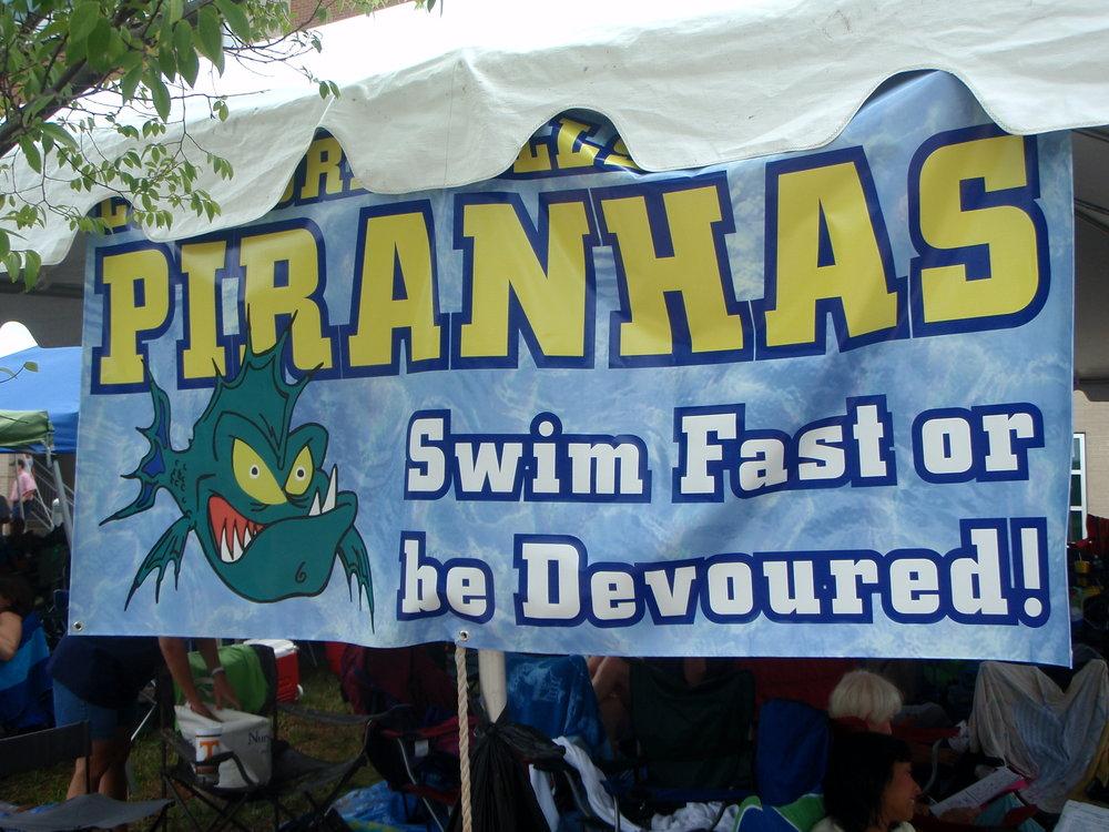 Swim Team Banner