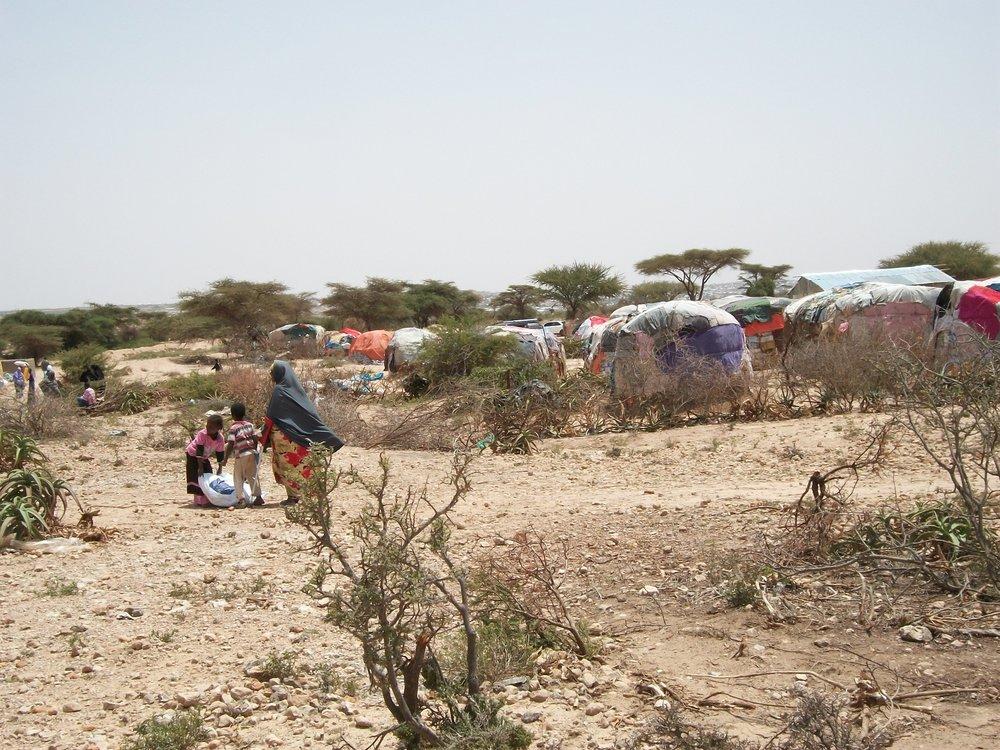 Hargeisa IDP Camp