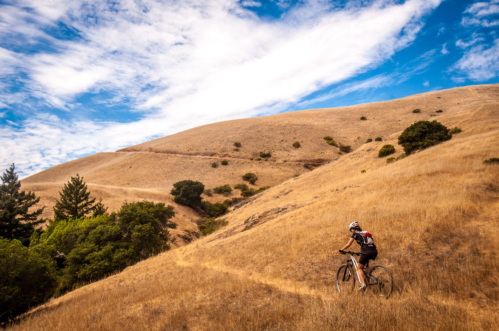 Ride the most popular trail in the birthplace of the mountain bike