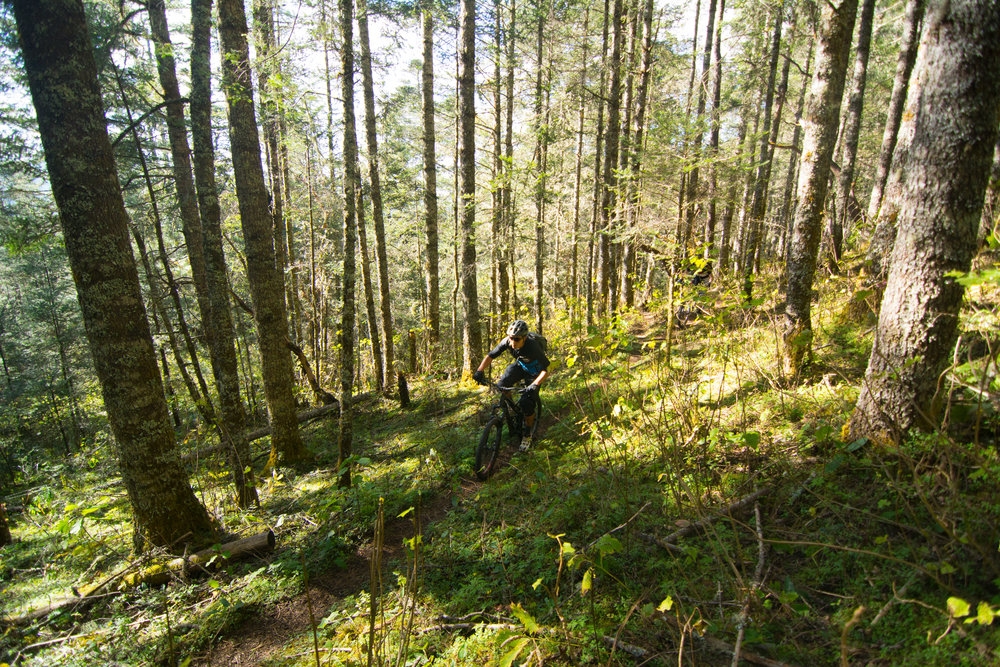 Flowy Sierra Norte singletrack trails fr mountain biking tours