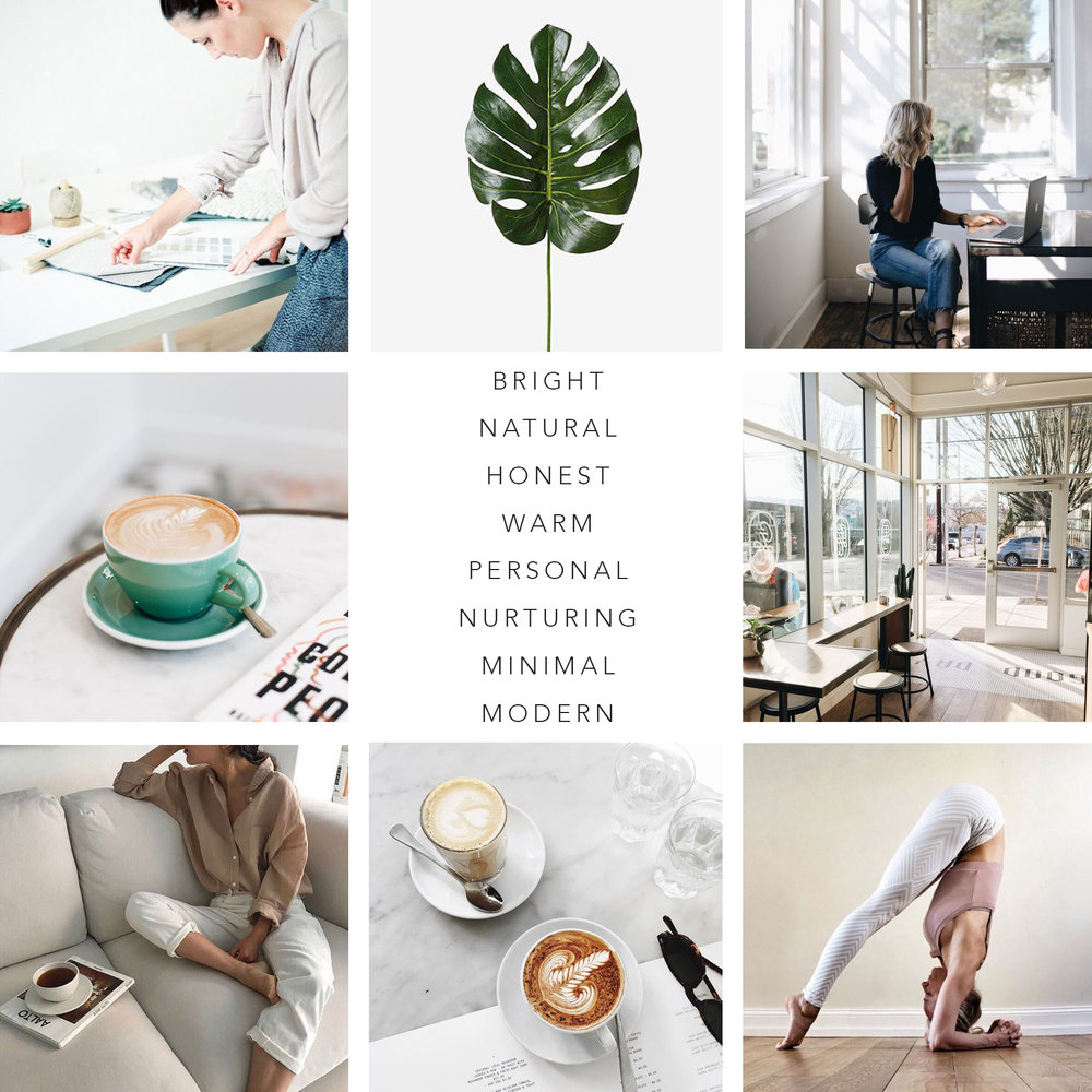 Brand Photography Mood Board Evernew