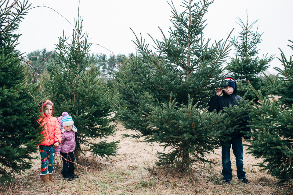 Christmas Tree Farm Westport Connecticut Family-14.jpg