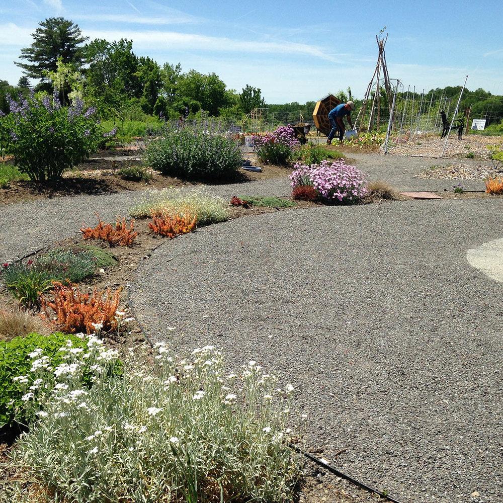 Public Project Circle Garden.jpg