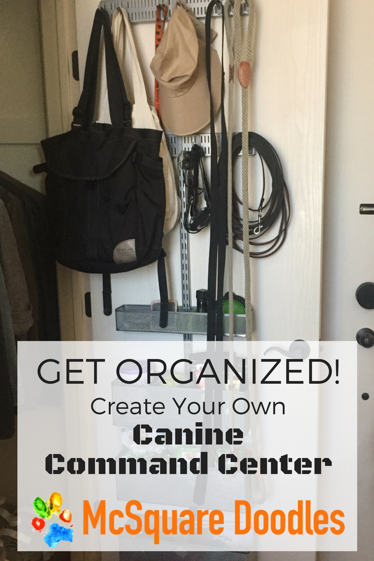 Pet parents get organized! Create your own canine command center.