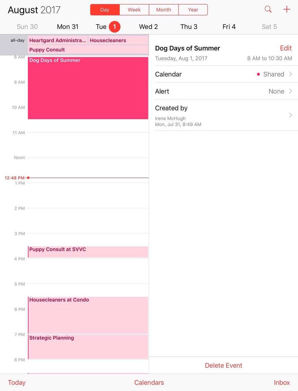 Since our different shared calendars can get full, I like using the daily view to see how my day will be paced.