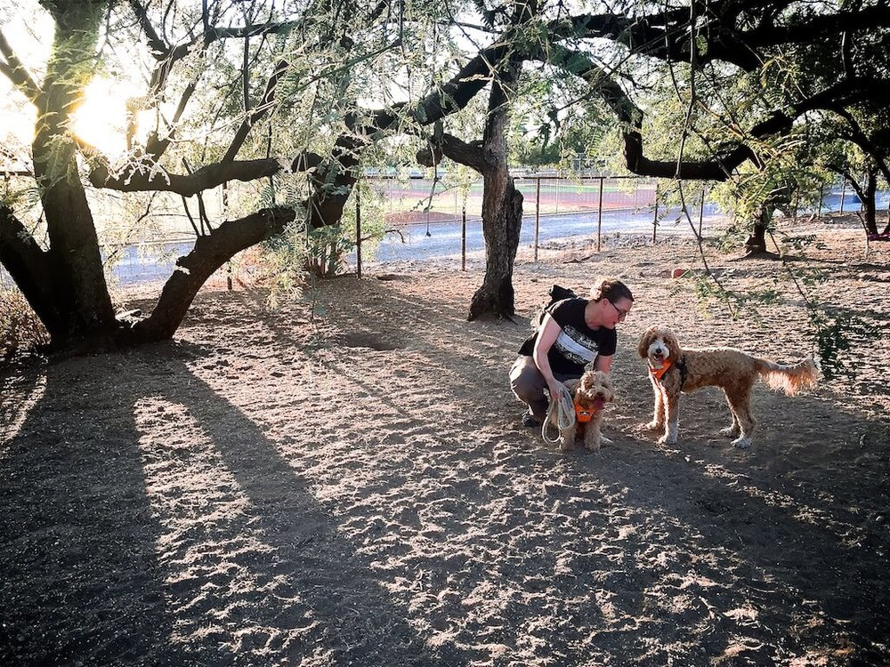 Bernie and Lizzie McSquare resting at Smiling Dog Ranch in Tucson.