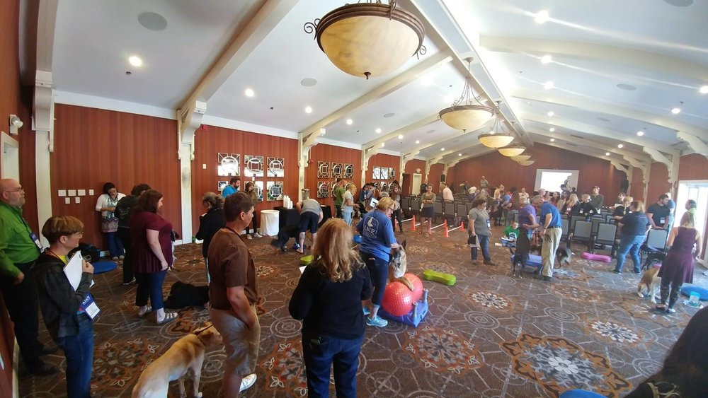 K9 Fitness Workshop with Erica Boling at the IACP Conference 2017,