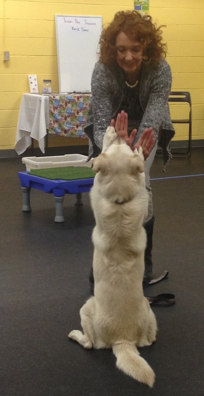 Kota proudly shows off her tricks during a demonstration at A Loyal Companion's 3rd annual Open House.