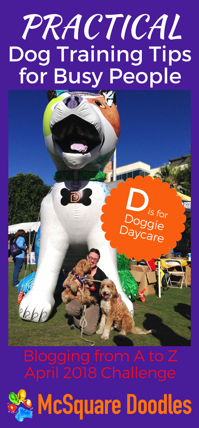 #AtoZChallenge - D  is for Doggie Daycare - Practical Dog Training Tips for Busy People on McSquare Doodles