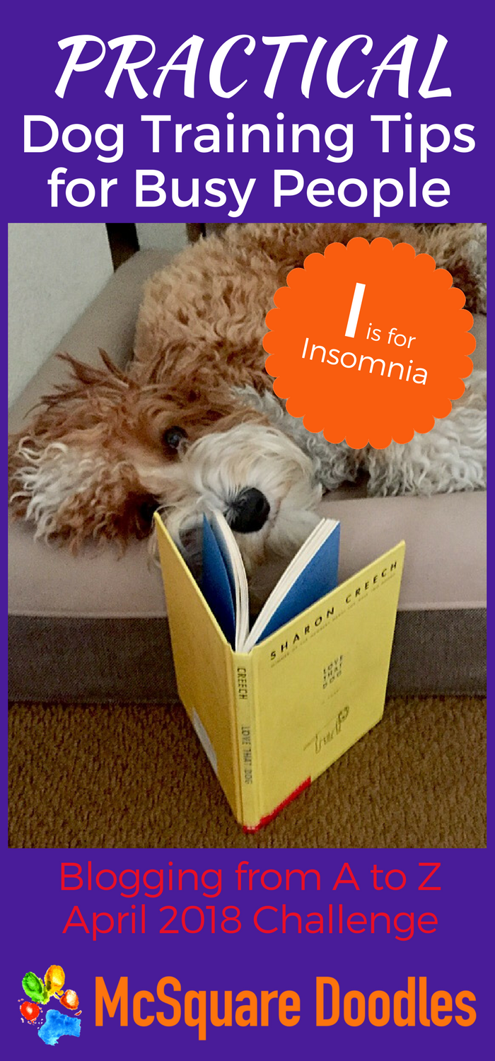 #AtoZChallenge - I is for Insomnia - Practical Dog Training Tips for Busy People on McSquare Doodles
