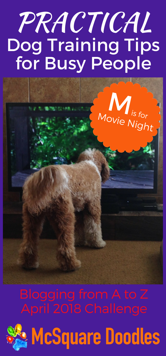#AtoZChallenge - M is for Movie Night - Practical Dog Training Tips for Busy People on McSquare Doodles