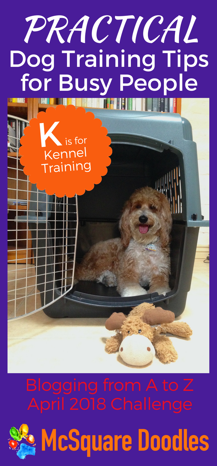 #AtoZChallenge - K is for Kennel Training - Practical Dog Training Tips for Busy People on McSquare Doodles