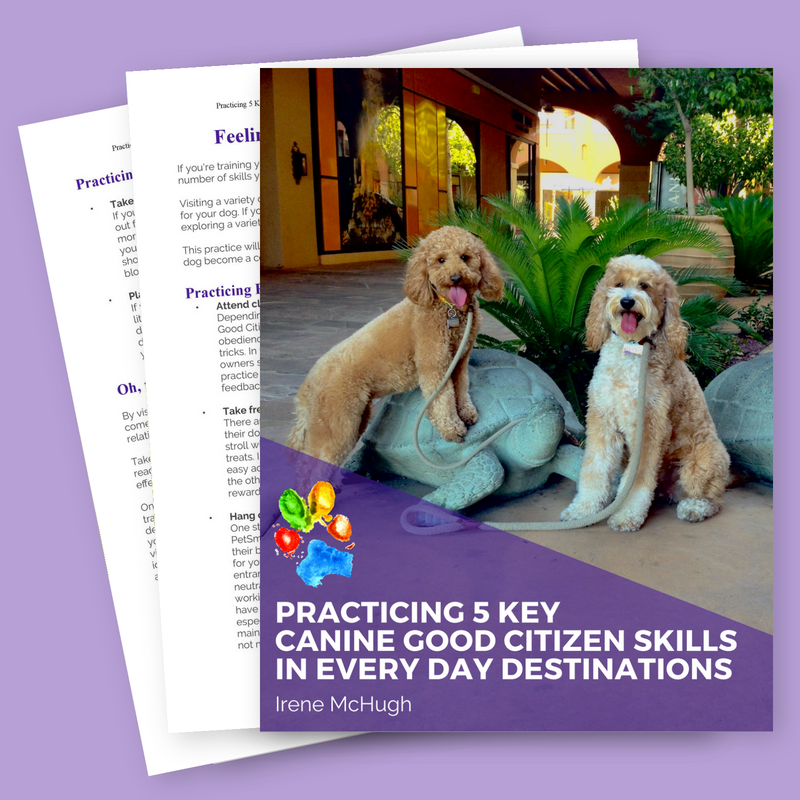 Book cover for ebook Practicing 5 Key Canine Good Citizen Skills in Every Day Destinations