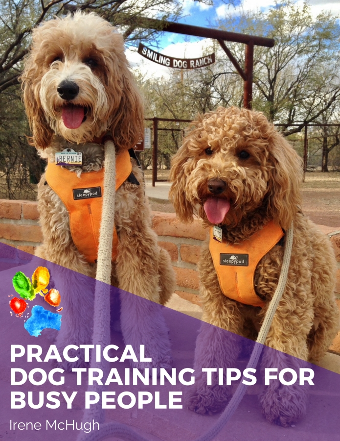 Subscribe to our community of therapy dog enthusiasts to get your FREE copy of this A to Z list of inspiring ideas to energize your training journey with your dog. Learn how to fit dog training into your hectic life by reading our 45-page ebook for tips to help you find time every day to work effectively with your dog while strengthening your bond. #dogtraining #dogtrainingideas #therapydogtraining #therapydogideas #mcsquaredoodles