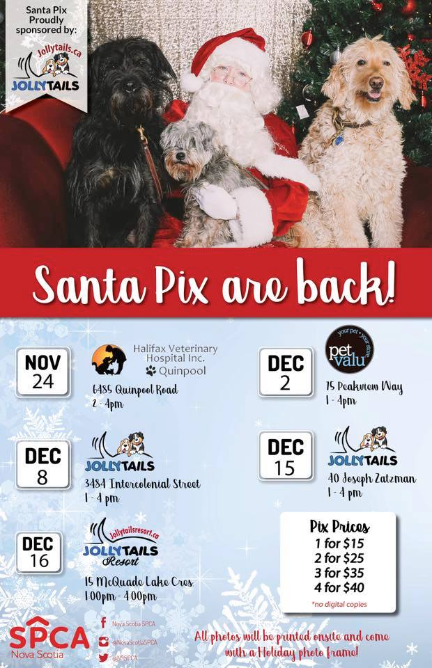 We are very proud to sponsor the NS SPCA SantaPix fundraiser!
