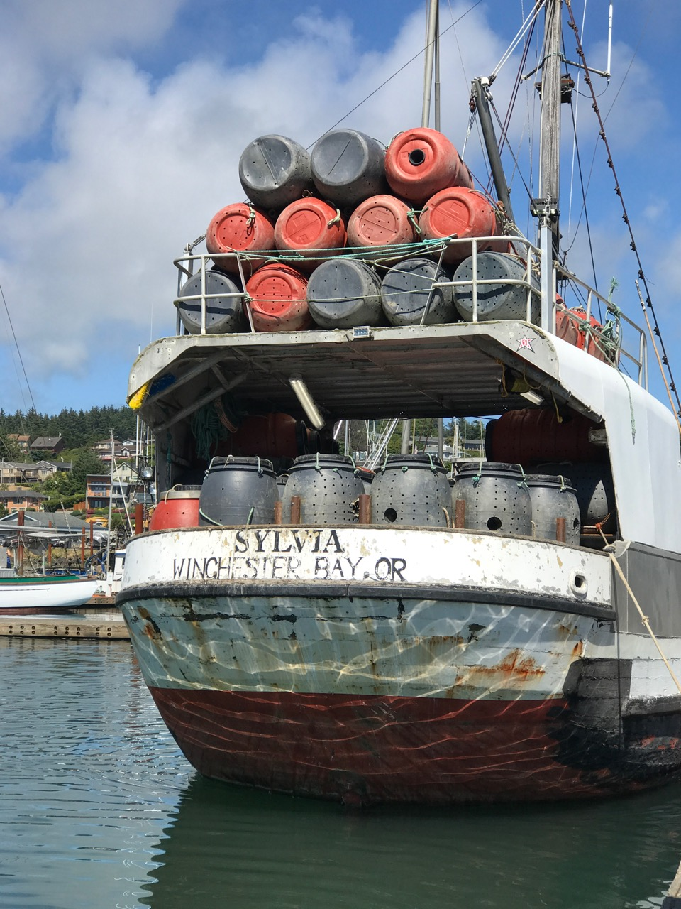 The Sylvia