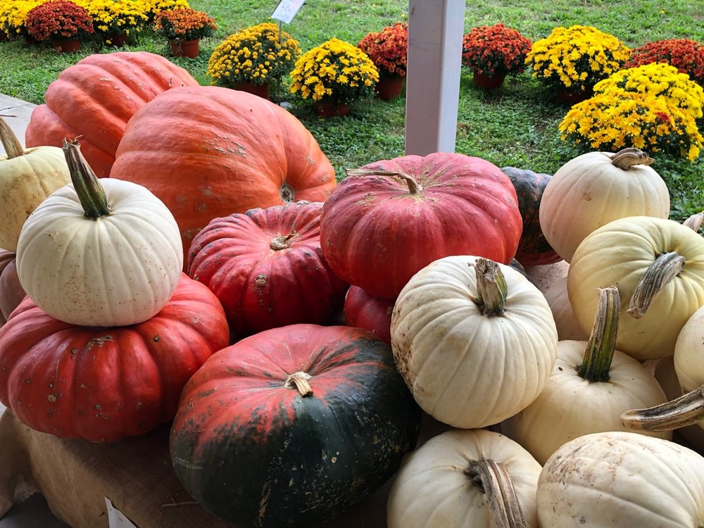 Pumpkins at a farm-stand in Lancaster County, PA