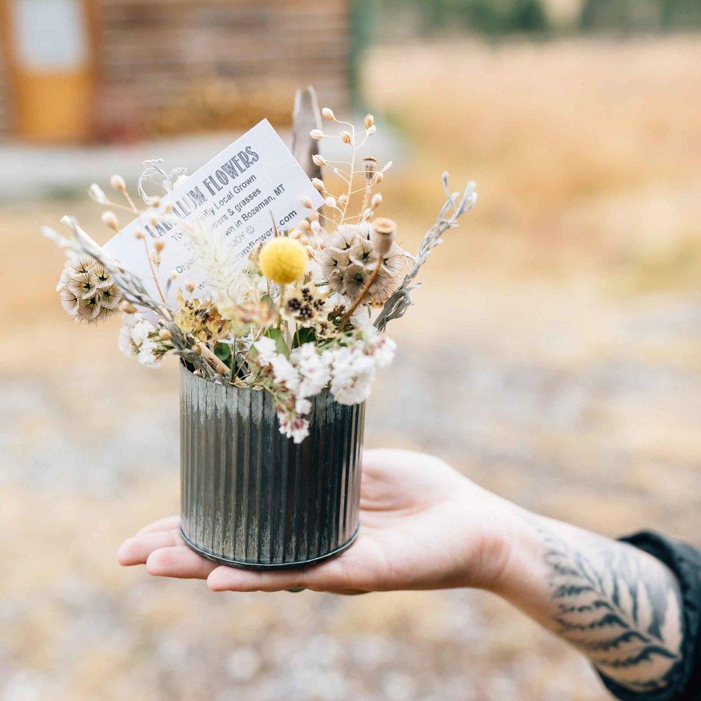 Labellum Flowers Dare To Detour
