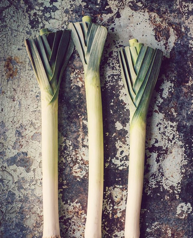 What's in season?⁣ . . .⁣ Leeks!⁣ . . .⁣ Leeks are composed mostly of water, 90% to be exact! Leeks have anti-inflammatory, antiseptic, and anti-fungal properties. So if you like the flavour of leeks then this power house of a vegetable will do wonders for you.⁣ .⁣ .⁣ .⁣ .⁣ #CrownAndBliss #SelfLove #Empowerment #Beauty #Woman #Power #Mind #Body #Soul #SelfGrowth #Unity #Confidence #WomenSupportingWomen #WomenShould #Equality #LadyBoss #GirlsCount #Vegetables #Leeks #April #Spring