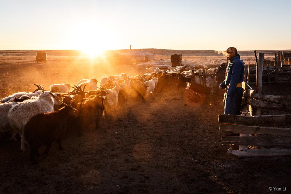 201612_Mongolia-9262.jpg