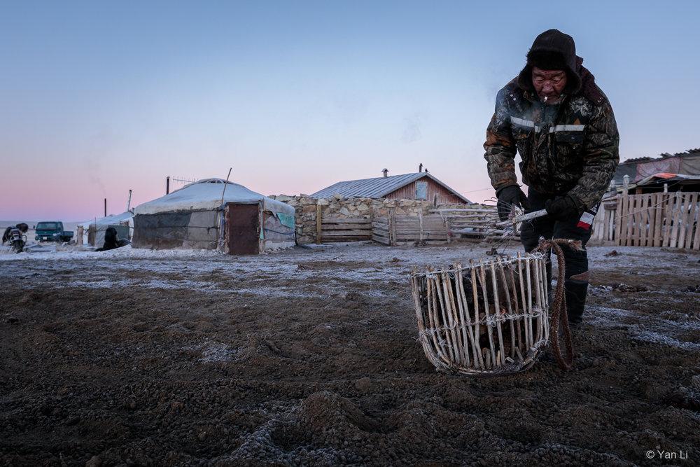 201612_Mongolia-9889.jpg