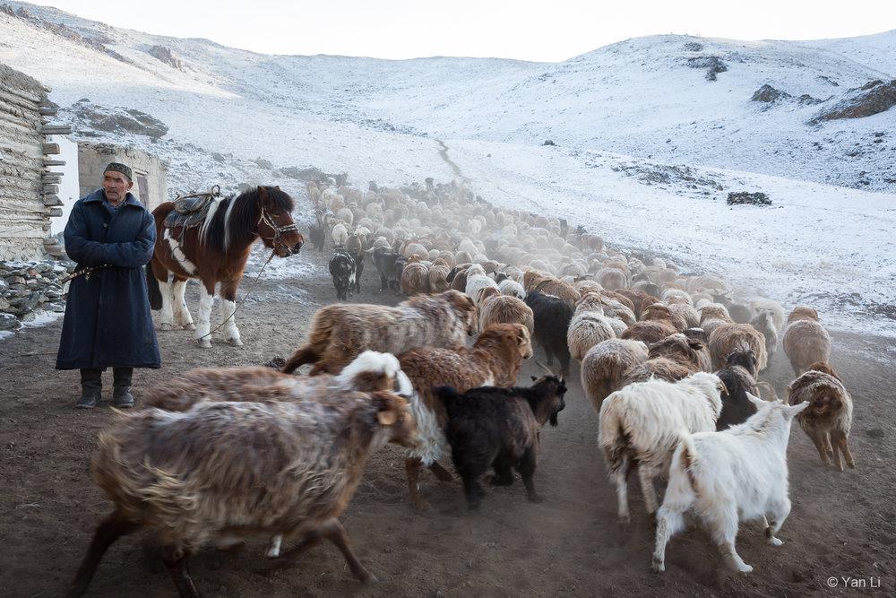 201612_Mongolia-0748.jpg