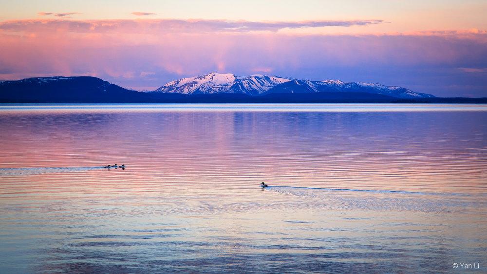 201406_Yellowstone-0671.jpg