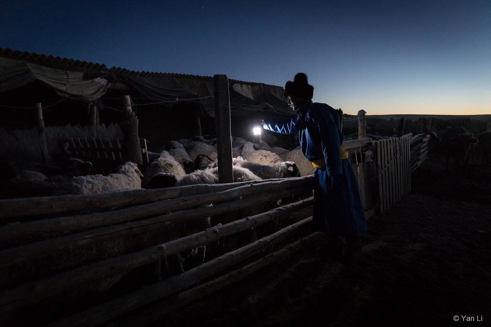 201612_Mongolia-9443.jpg