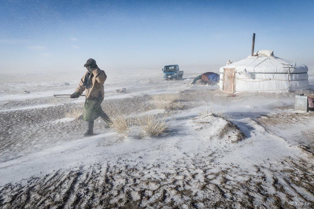 201612_Mongolia-8155.jpg