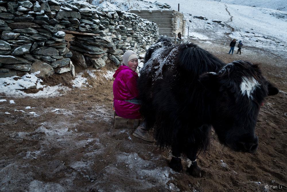 201612_Mongolia-0319.jpg