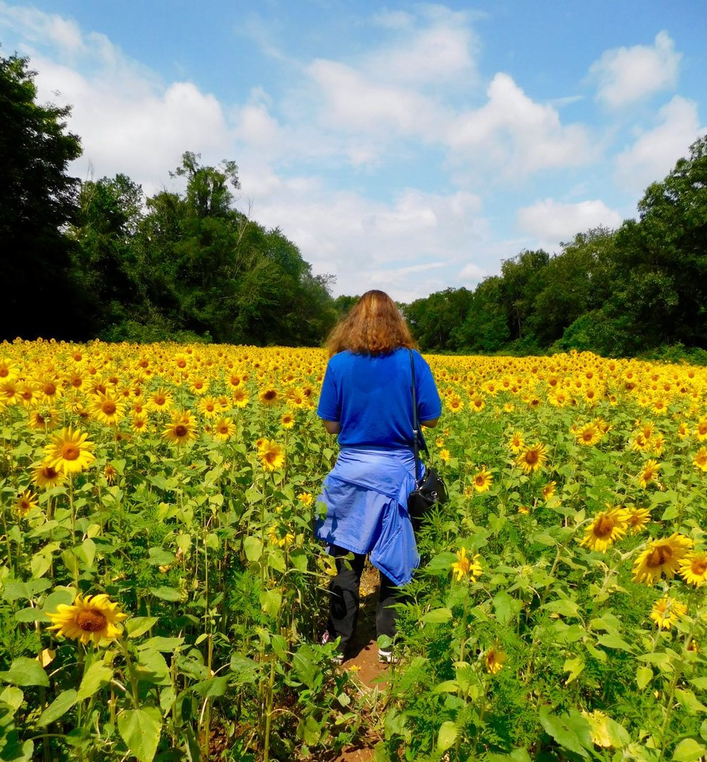 Woman at Peak Sunflower Bloom