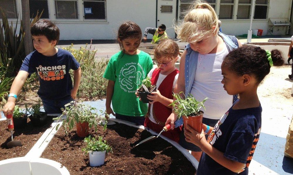 Big_Green_KidsPlanting.jpg
