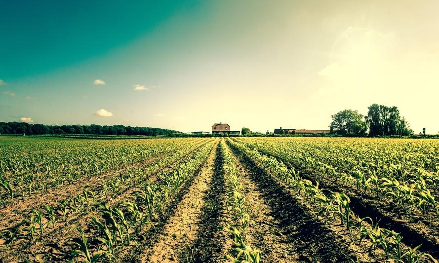 AdvancingOrganicAgriculture.jpg