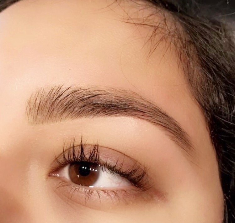 New Gallery Brows By Glo