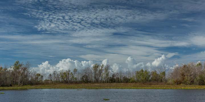 Louisiana_2014-1205-004