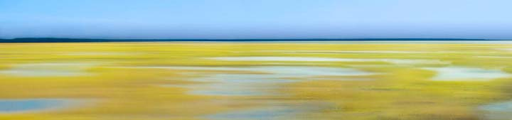 Morning Marsh View - Ft. George Island, FL - 108 x 30 Face-mount Acrylic