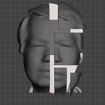 FaceForward001_front