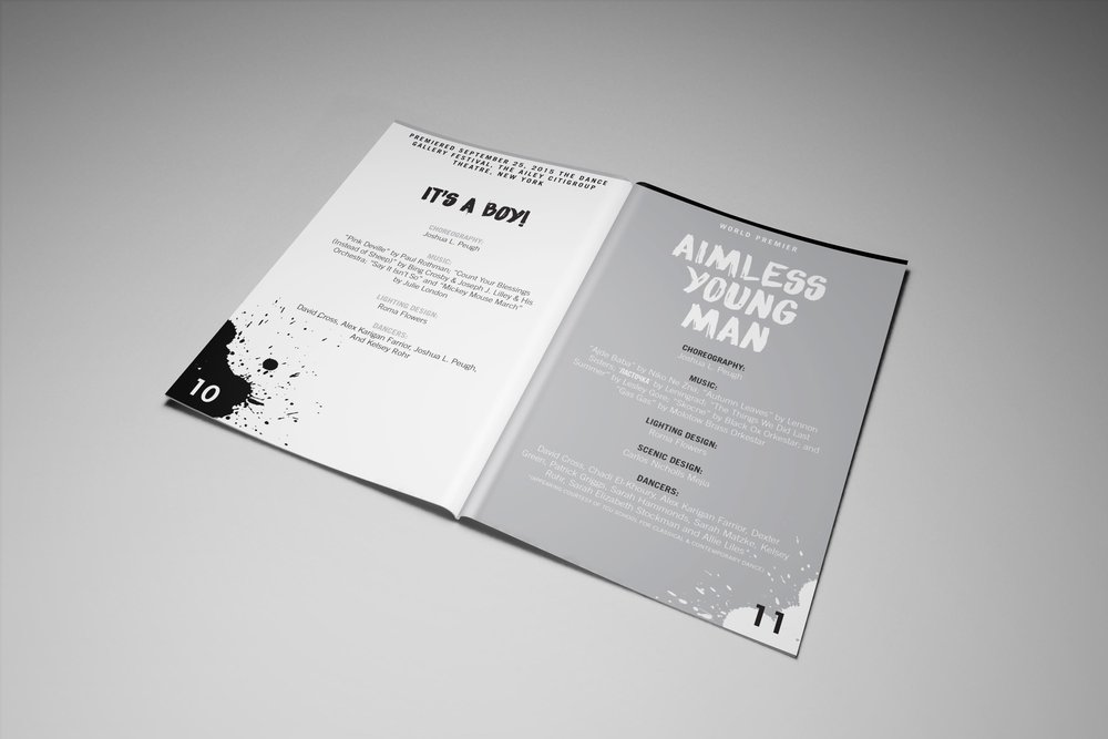 DCCD.AYM.Program.5.jpg