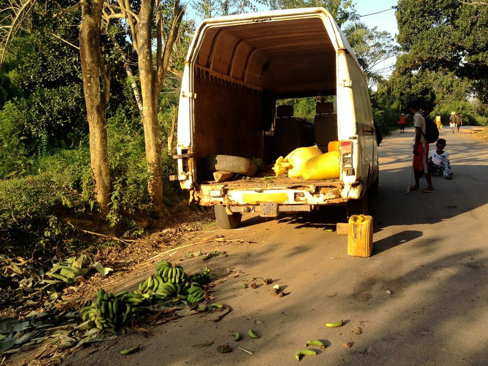 Banana delivery gone amuck on the road near the Kianjavato commune.