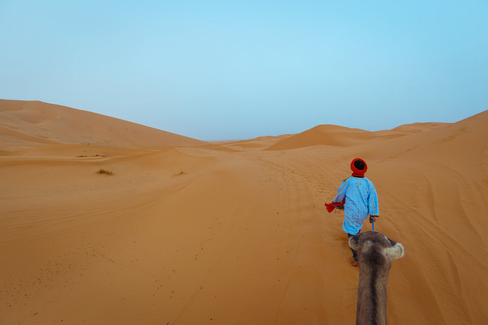 Camel trekking into the Sahara Desert.