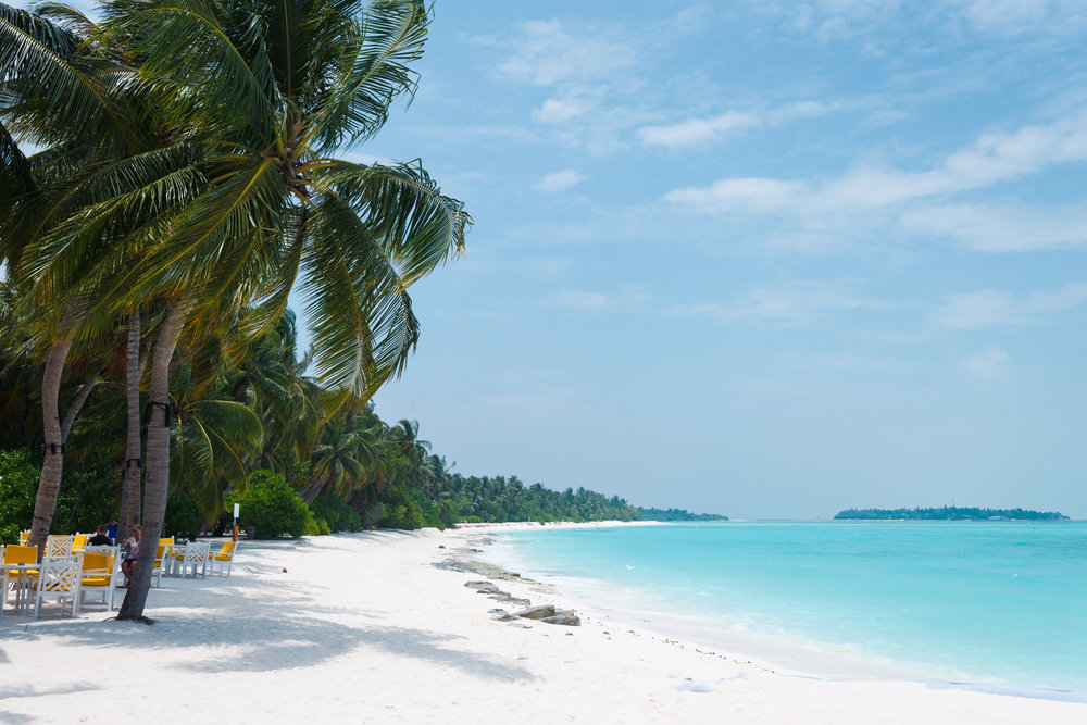 Tropical White Sands
