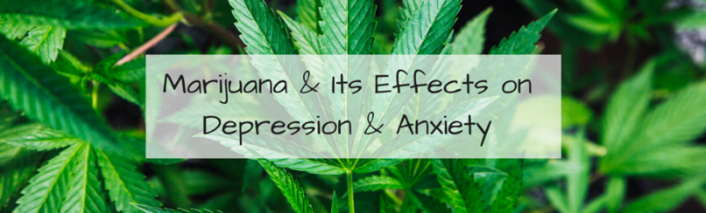 Marijuana & Its Effects on Depression & Anxiety.png