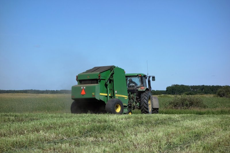 Baling the covercrop from the high energy grasses on July 28, 2016